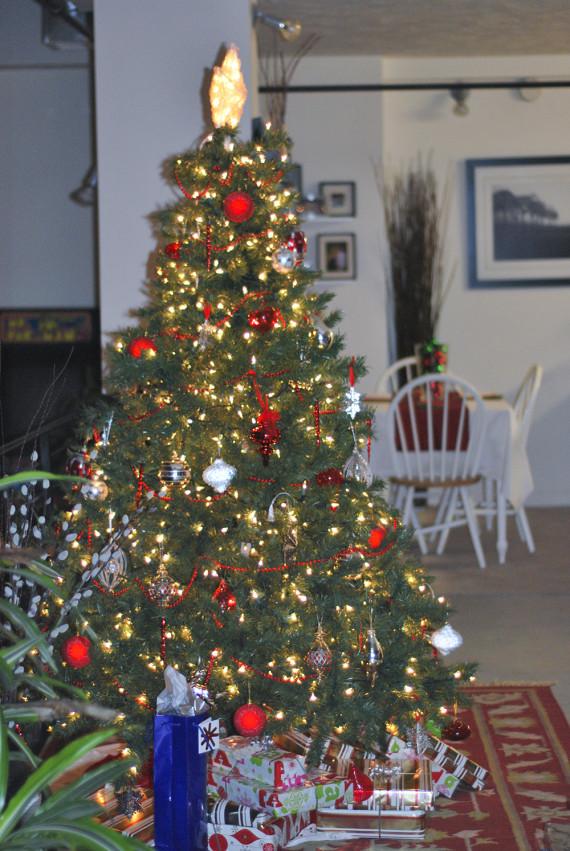 christmas2009_001