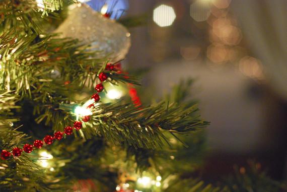 christmas2009_002