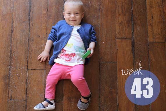 Weekly Baby Picture / Week 43